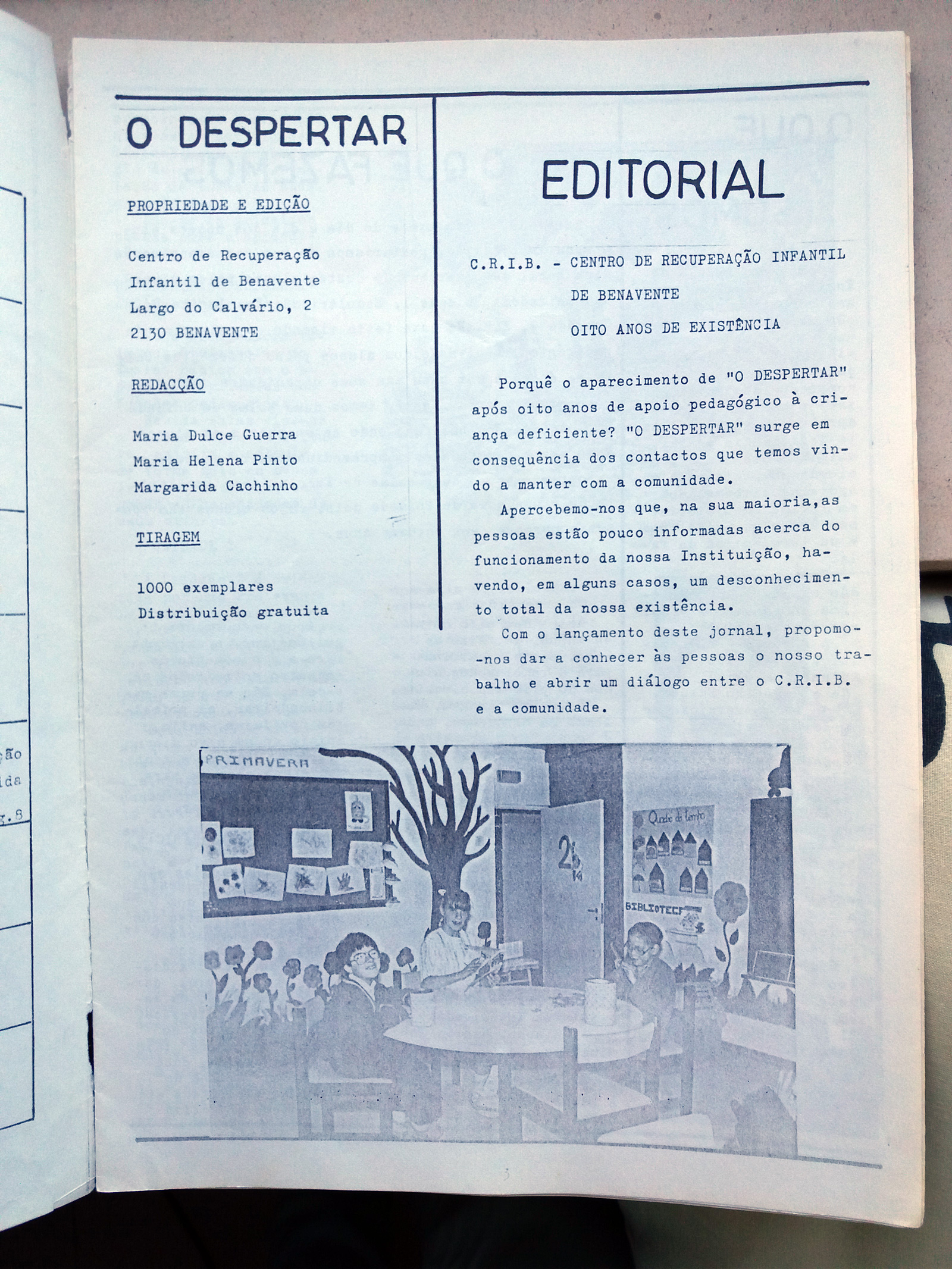Revista - O Despertar